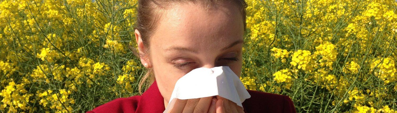 Therapie bei Allergien